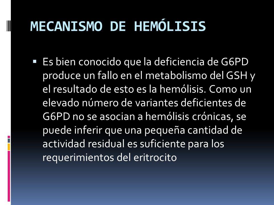 MECANISMO DE HEMÓLISIS
