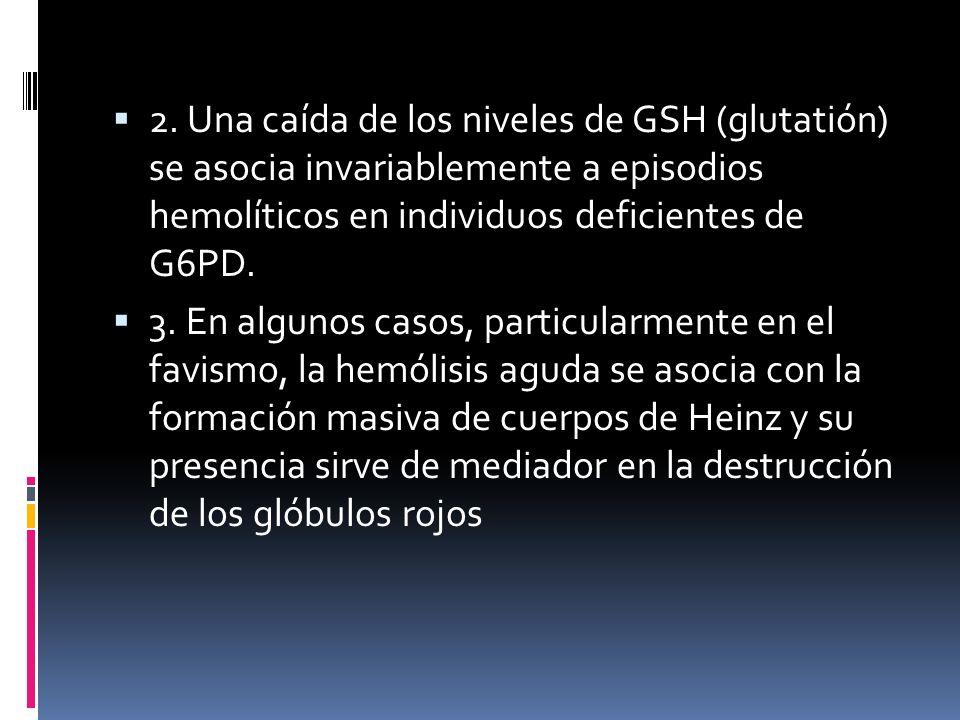 2. Una caída de los niveles de GSH (glutatión) se asocia invariablemente a episodios hemolíticos en individuos deficientes de G6PD.