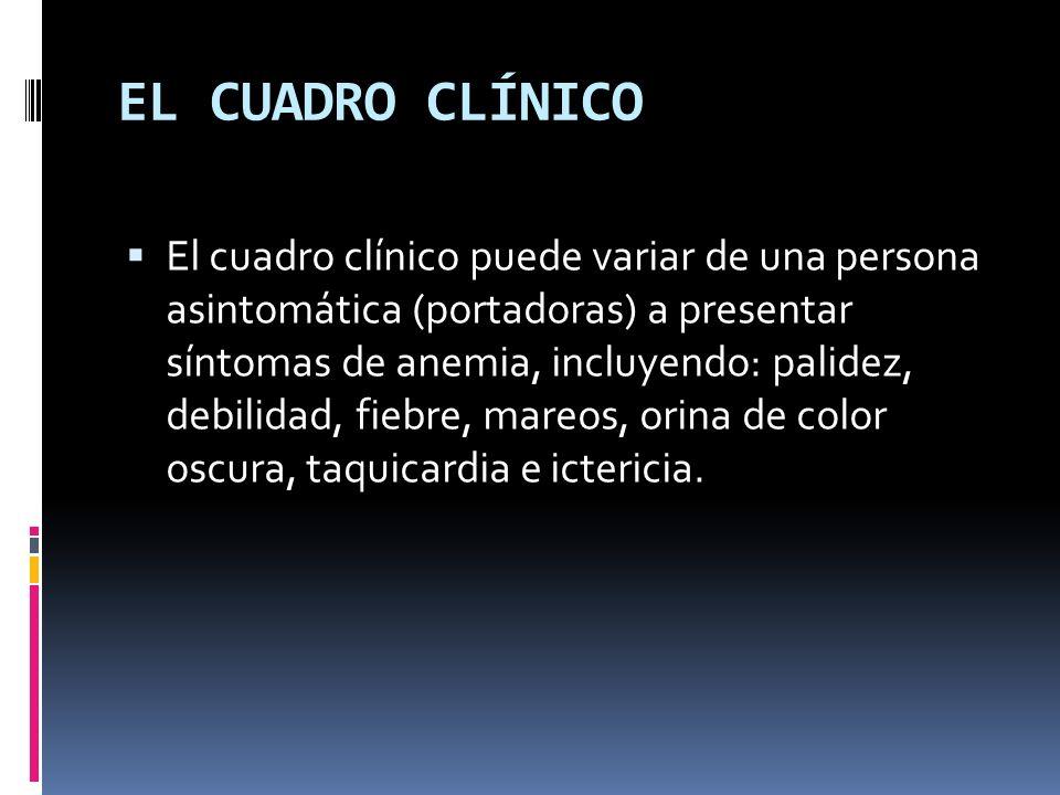 EL CUADRO CLÍNICO