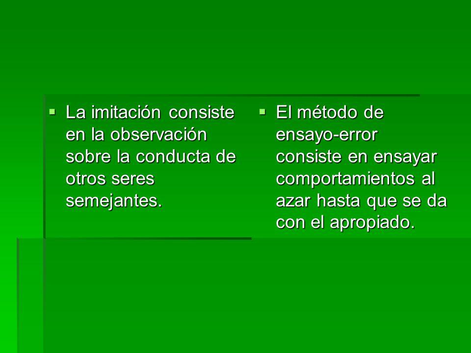 La imitación consiste en la observación sobre la conducta de otros seres semejantes.