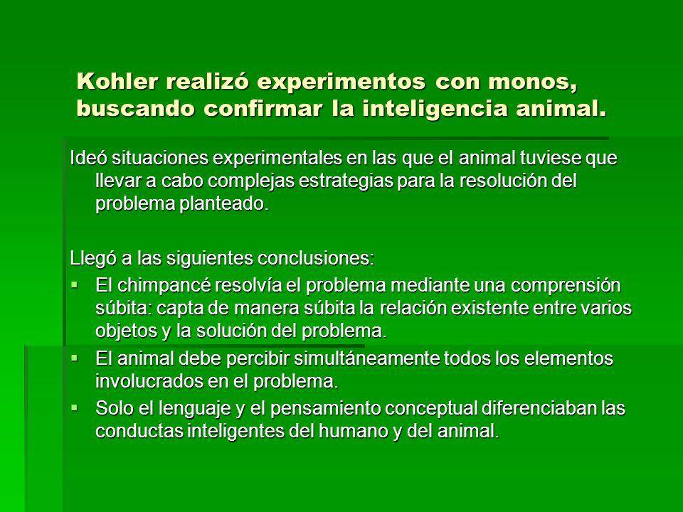 Kohler realizó experimentos con monos, buscando confirmar la inteligencia animal.