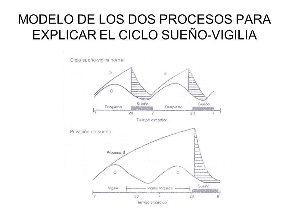 MODELO DE LOS DOS PROCESOS PARA EXPLICAR EL CICLO SUEÑO-VIGILIA