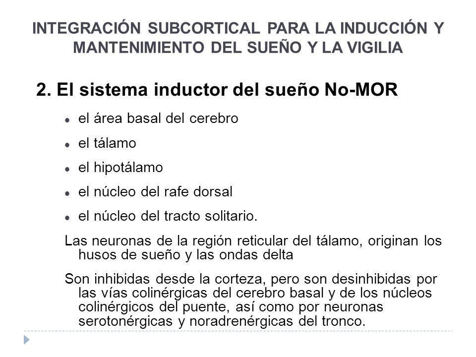2. El sistema inductor del sueño No-MOR