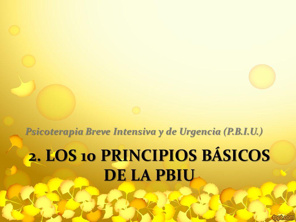 2. Los 10 principios básicos de la PBIU