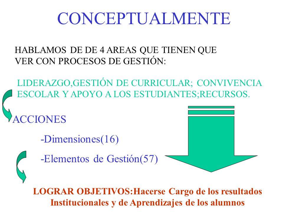 CONCEPTUALMENTE ACCIONES -Dimensiones(16) -Elementos de Gestión(57)