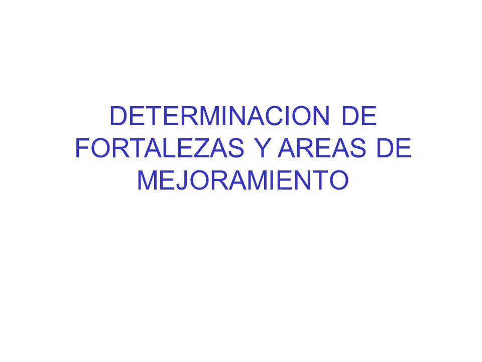 DETERMINACION DE FORTALEZAS Y AREAS DE MEJORAMIENTO