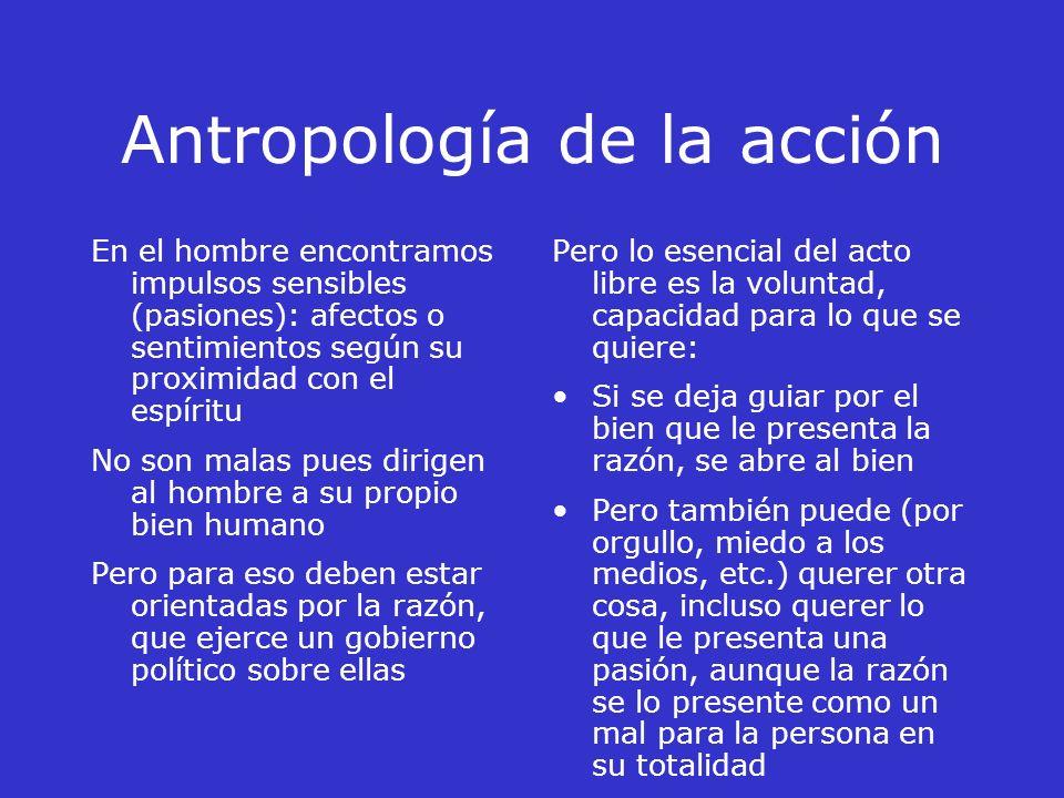 Antropología de la acción