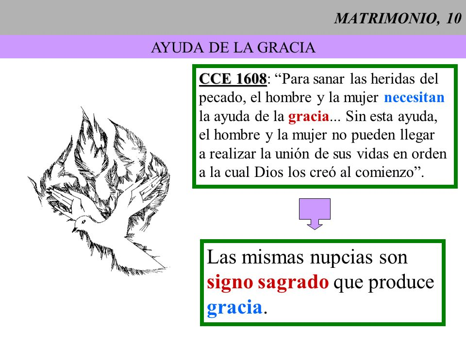signo sagrado que produce gracia.