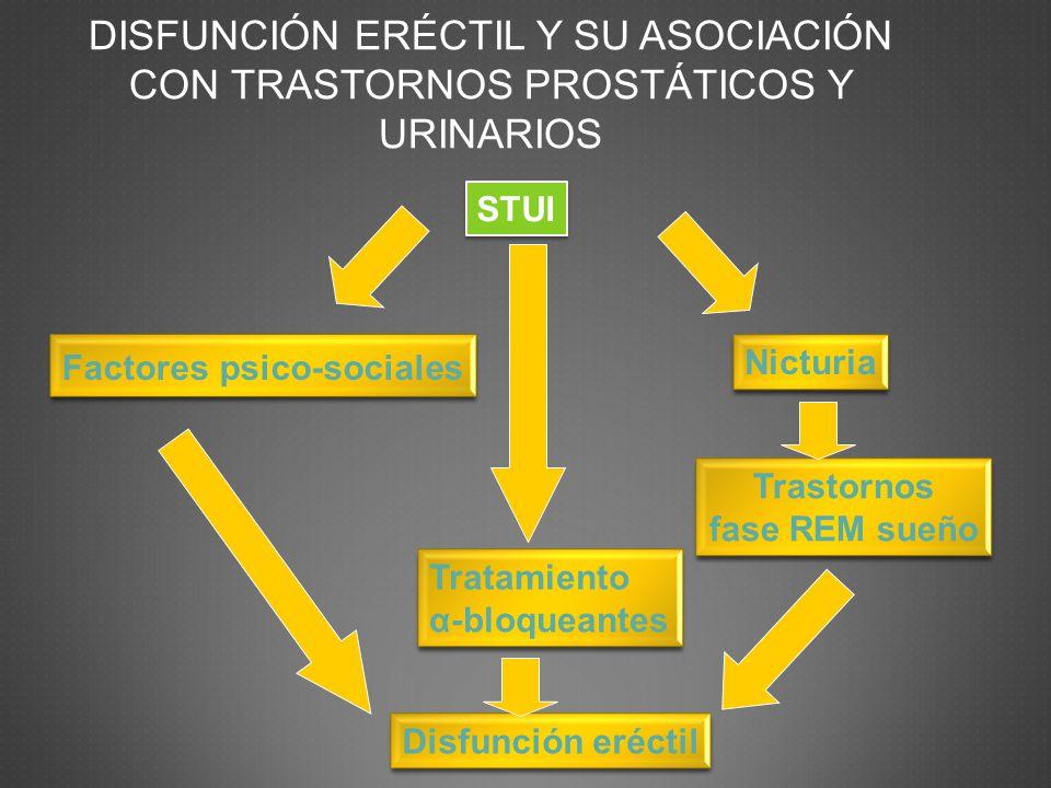 DISFUNCIÓN ERÉCTIL Y SU ASOCIACIÓN CON TRASTORNOS PROSTÁTICOS Y URINARIOS