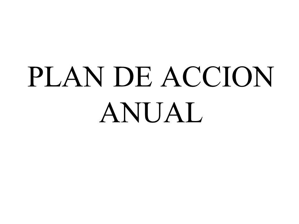 PLAN DE ACCION ANUAL