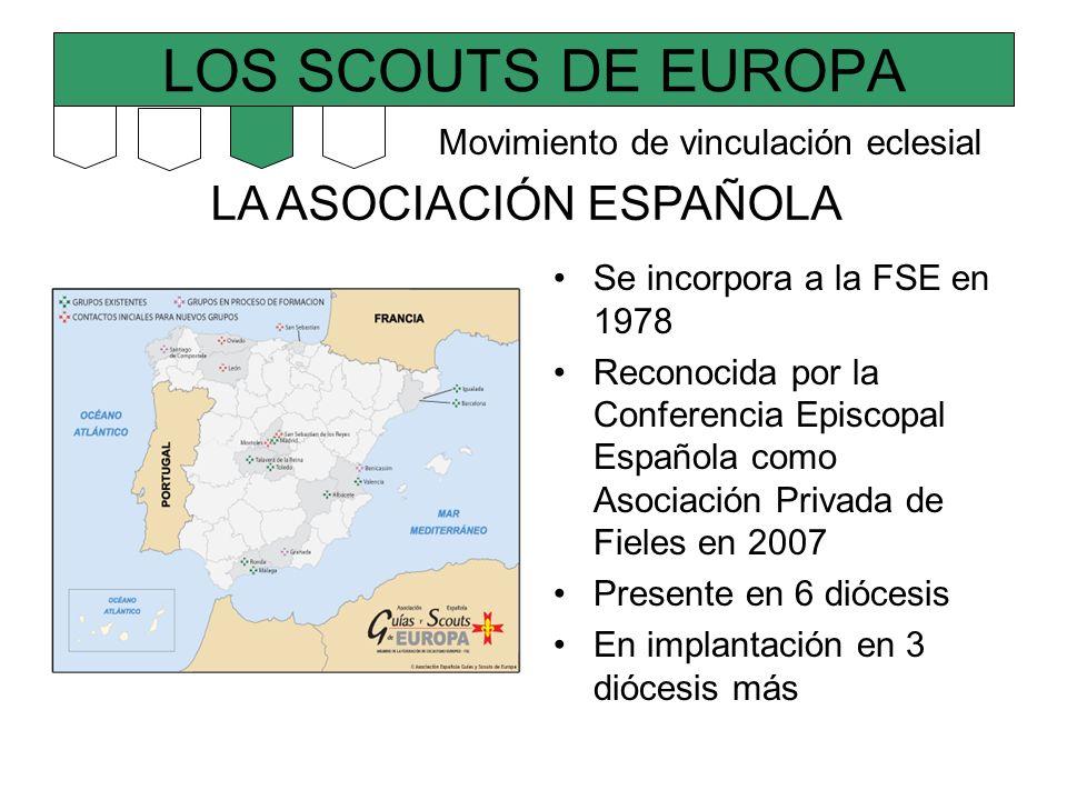 LOS SCOUTS DE EUROPA LA ASOCIACIÓN ESPAÑOLA