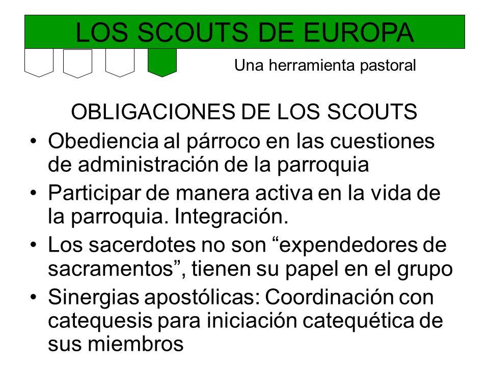 LOS SCOUTS DE EUROPA OBLIGACIONES DE LOS SCOUTS