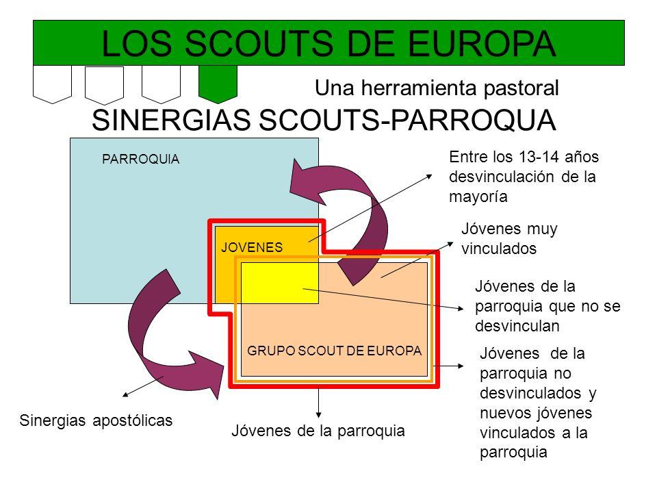 LOS SCOUTS DE EUROPA SINERGIAS SCOUTS-PARROQUA