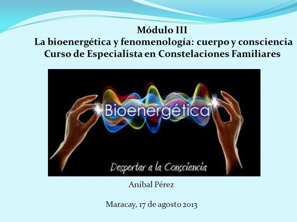 La bioenergética y fenomenología: cuerpo y consciencia