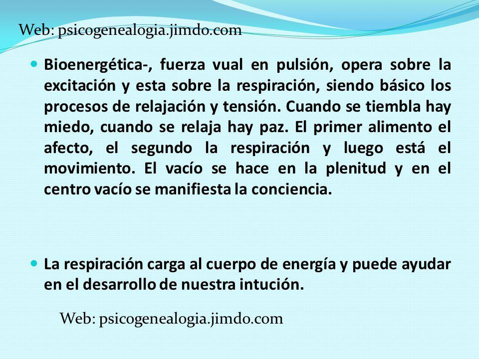 Web: psicogenealogia.jimdo.com