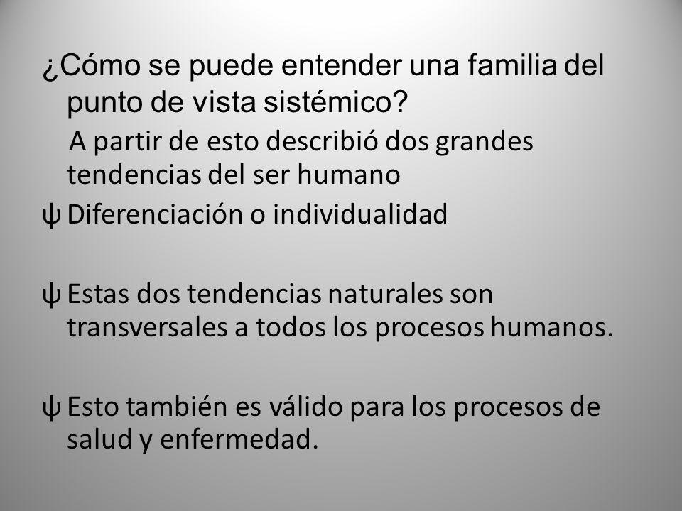 ¿Cómo se puede entender una familia del punto de vista sistémico