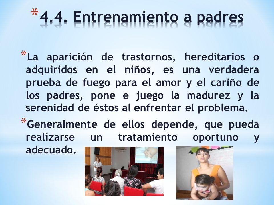 4.4. Entrenamiento a padres
