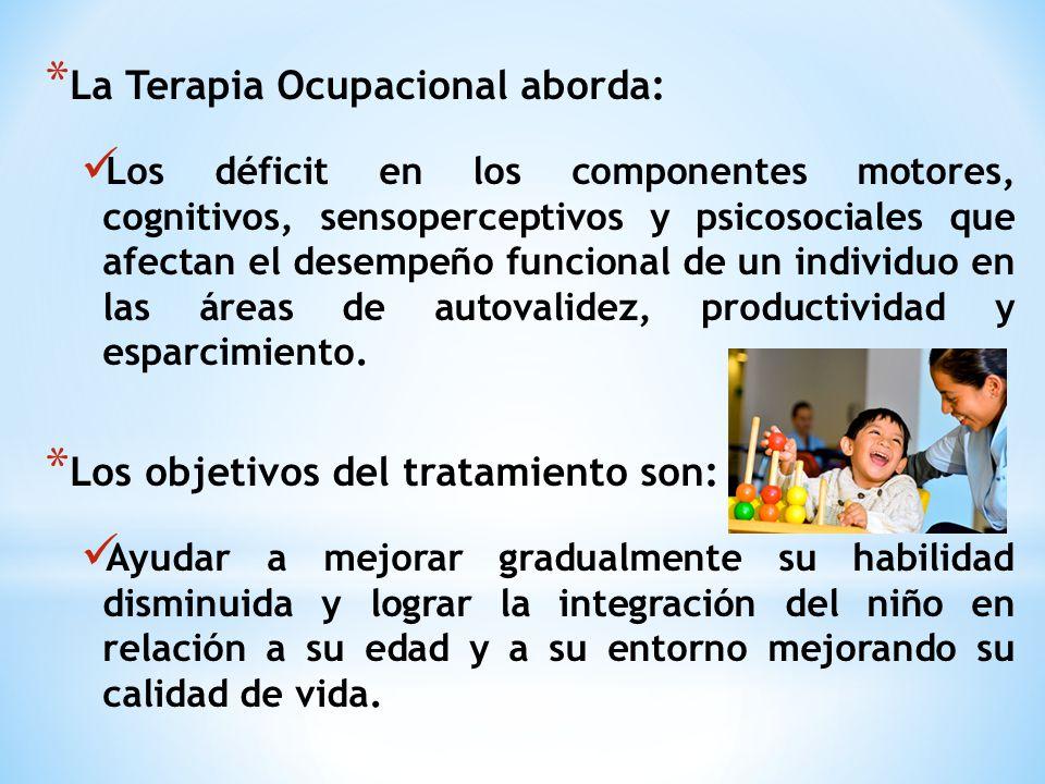 La Terapia Ocupacional aborda: