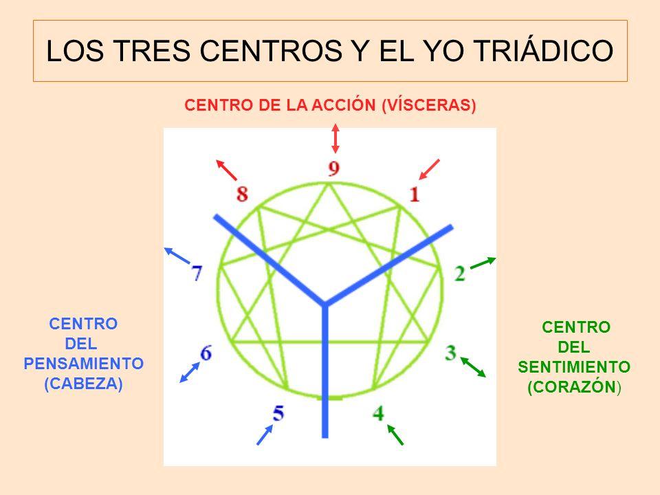 LOS TRES CENTROS Y EL YO TRIÁDICO