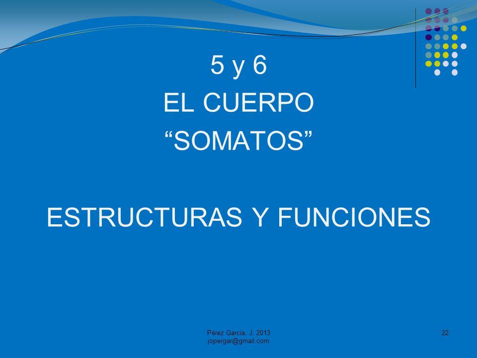 5 y 6 EL CUERPO SOMATOS ESTRUCTURAS Y FUNCIONES