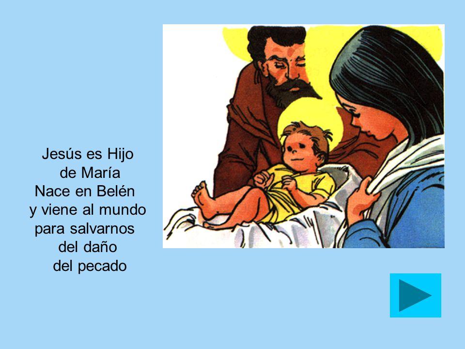 Jesús es Hijo de María Nace en Belén y viene al mundo para salvarnos del daño del pecado