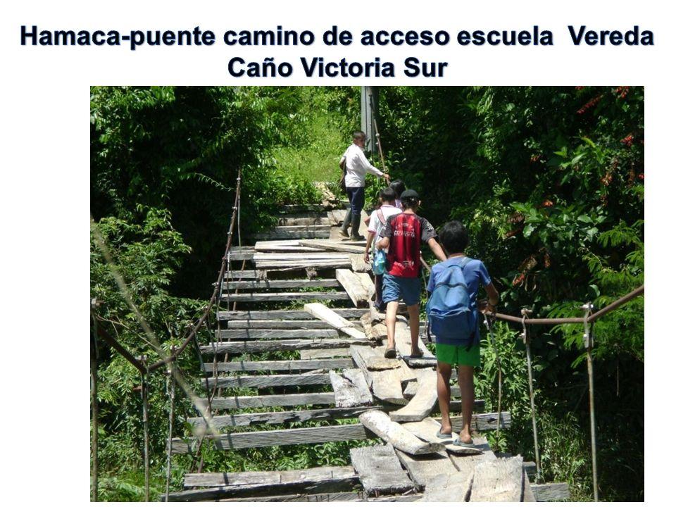 Hamaca-puente camino de acceso escuela Vereda Caño Victoria Sur
