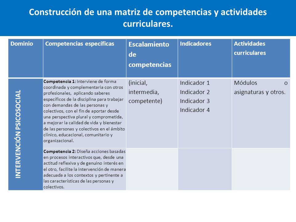 Construcción de una matriz de competencias y actividades curriculares.