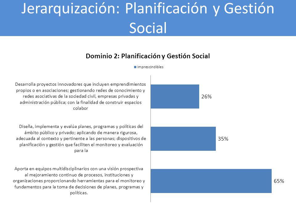 Jerarquización: Planificación y Gestión Social