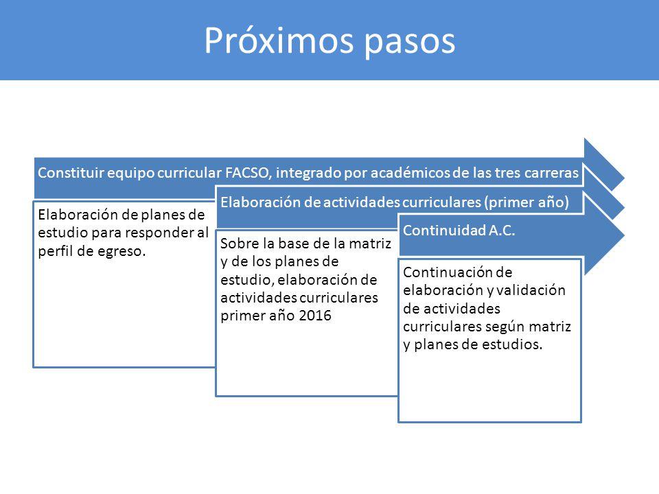 Próximos pasos Constituir equipo curricular FACSO, integrado por académicos de las tres carreras.