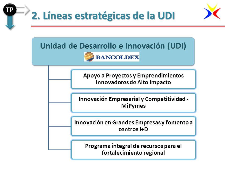 2. Líneas estratégicas de la UDI