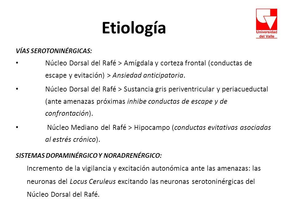 Etiología VÍAS SEROTONINÉRGICAS: Núcleo Dorsal del Rafé > Amígdala y corteza frontal (conductas de escape y evitación) > Ansiedad anticipatoria.