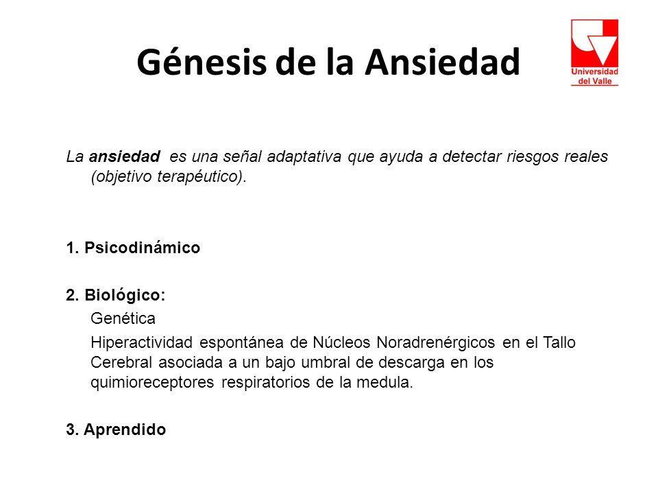 Génesis de la Ansiedad La ansiedad es una señal adaptativa que ayuda a detectar riesgos reales (objetivo terapéutico).