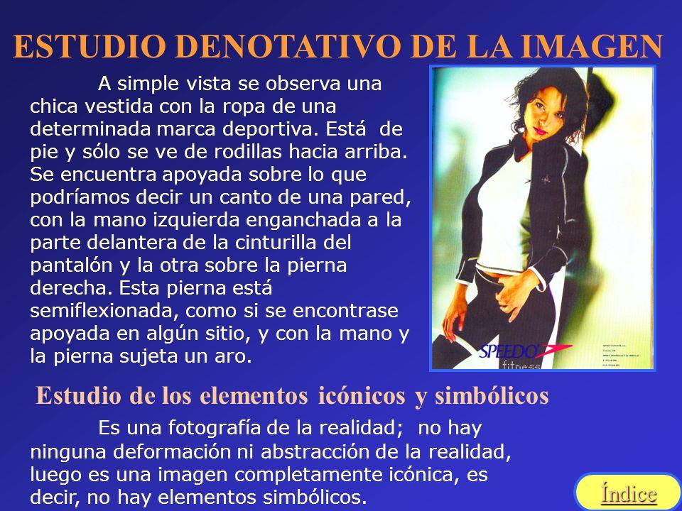 ESTUDIO DENOTATIVO DE LA IMAGEN