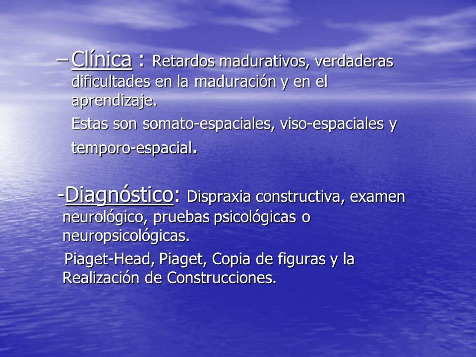 Clínica : Retardos madurativos, verdaderas dificultades en la maduración y en el aprendizaje.