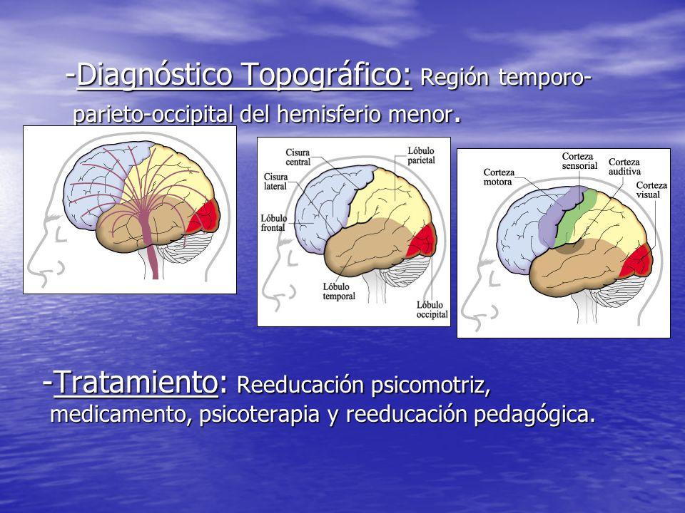 -Diagnóstico Topográfico: Región temporo-parieto-occipital del hemisferio menor.