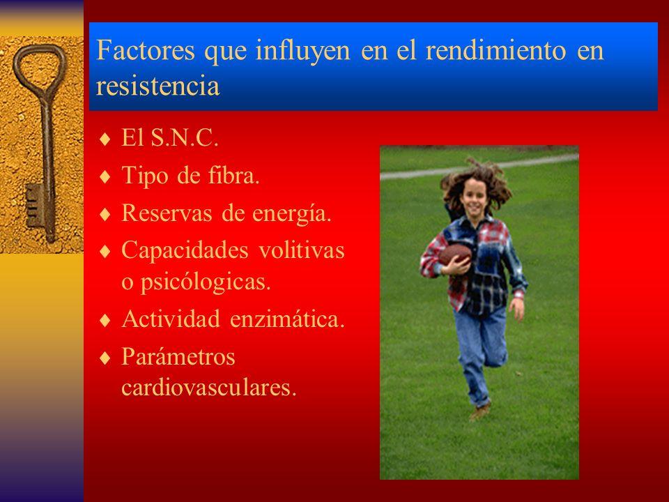 Factores que influyen en el rendimiento en resistencia