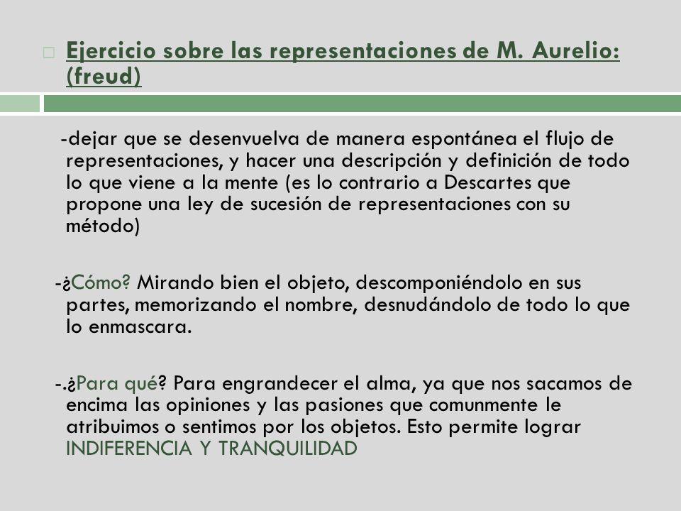 Ejercicio sobre las representaciones de M. Aurelio: (freud)