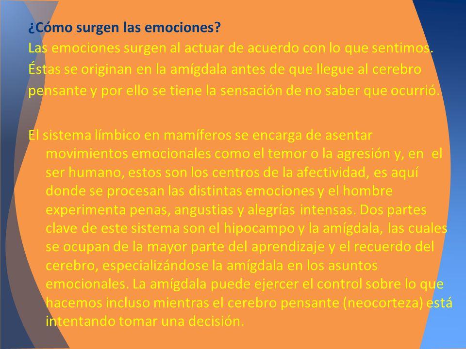 ¿Cómo surgen las emociones