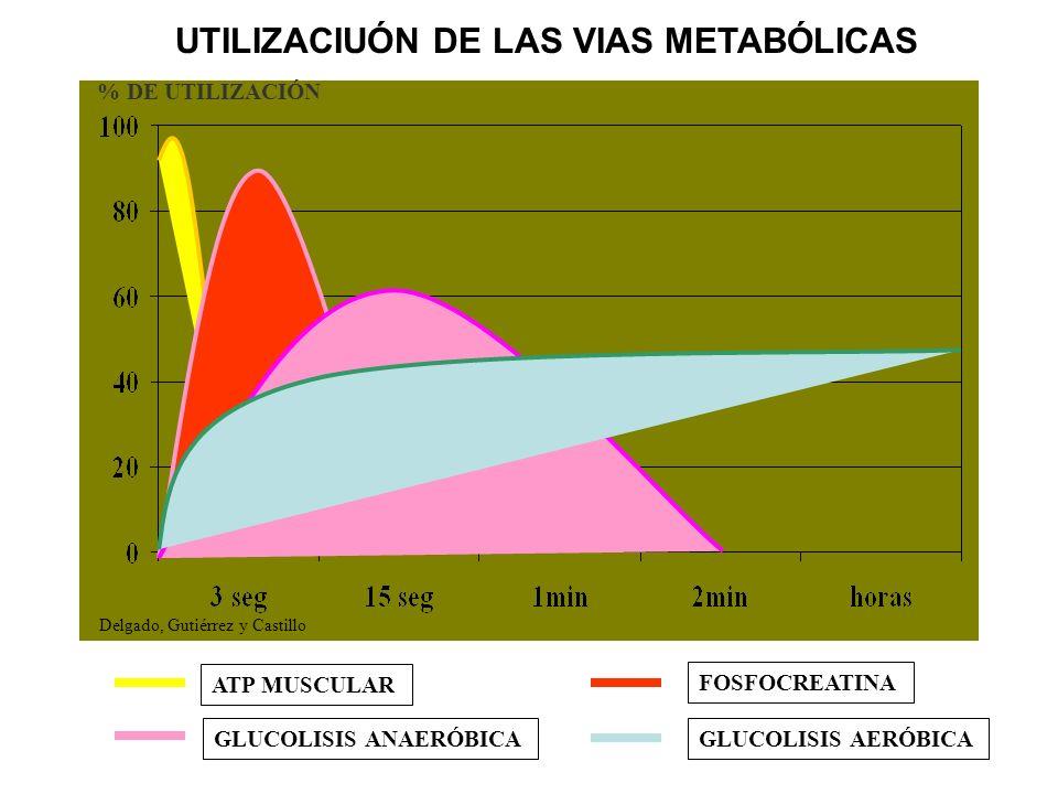 UTILIZACIUÓN DE LAS VIAS METABÓLICAS