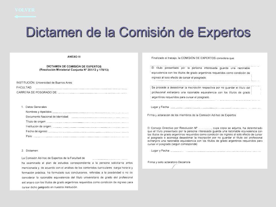Dictamen de la Comisión de Expertos