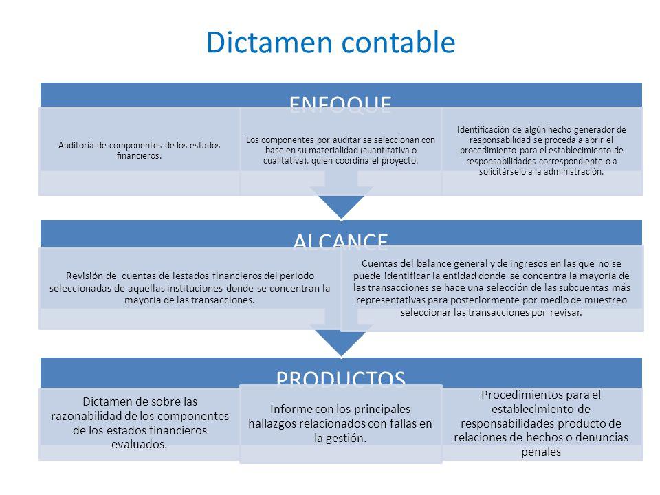 Auditoría de componentes de los estados financieros.