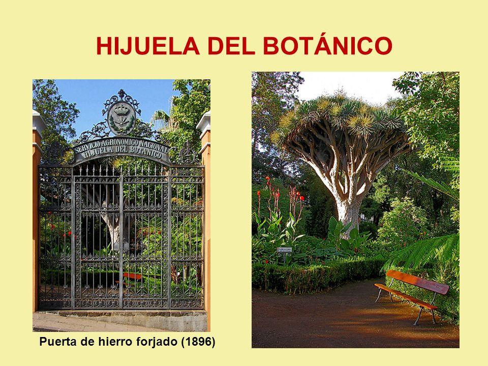 HIJUELA DEL BOTÁNICO Puerta de hierro forjado (1896)