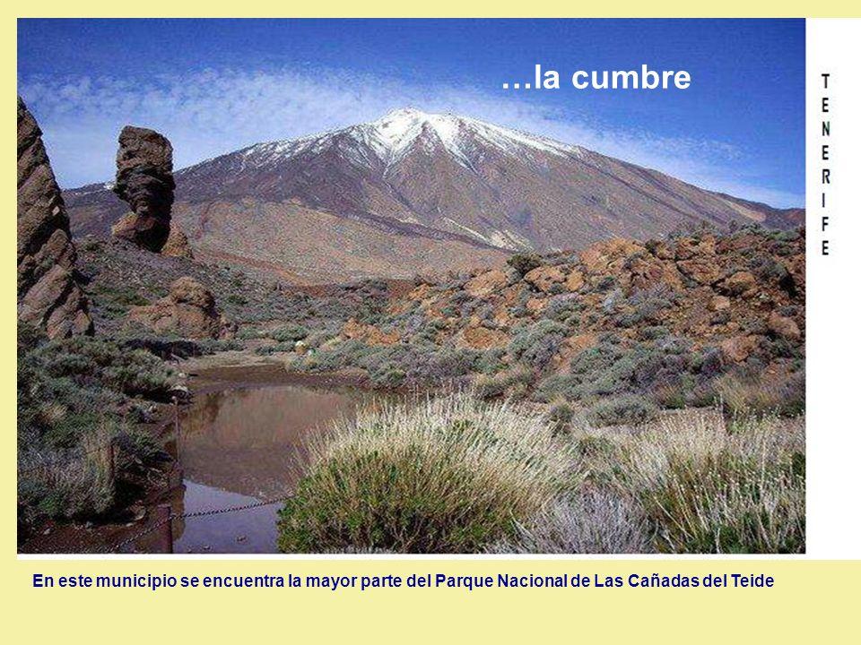 …la cumbre En este municipio se encuentra la mayor parte del Parque Nacional de Las Cañadas del Teide.