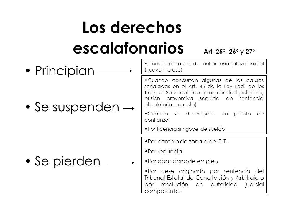 Los derechos escalafonarios Art. 25°, 26° y 27°