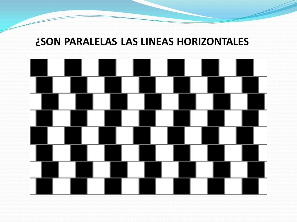 ¿SON PARALELAS LAS LINEAS HORIZONTALES