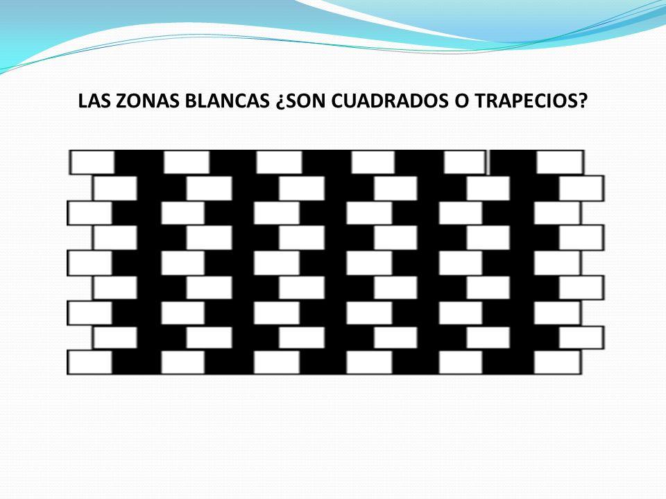 LAS ZONAS BLANCAS ¿SON CUADRADOS O TRAPECIOS