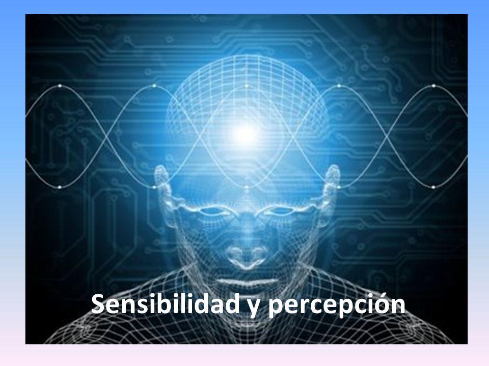 Sensibilidad y percepción