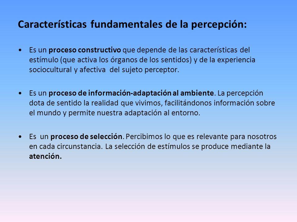 Características fundamentales de la percepción: