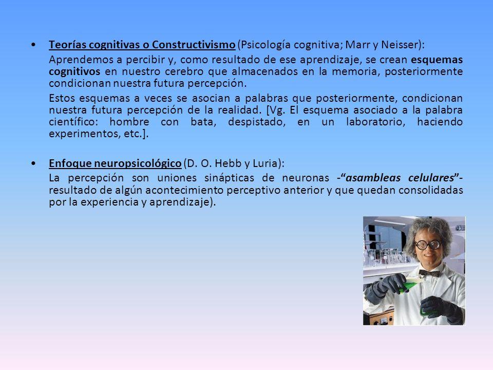 Teorías cognitivas o Constructivismo (Psicología cognitiva; Marr y Neisser):