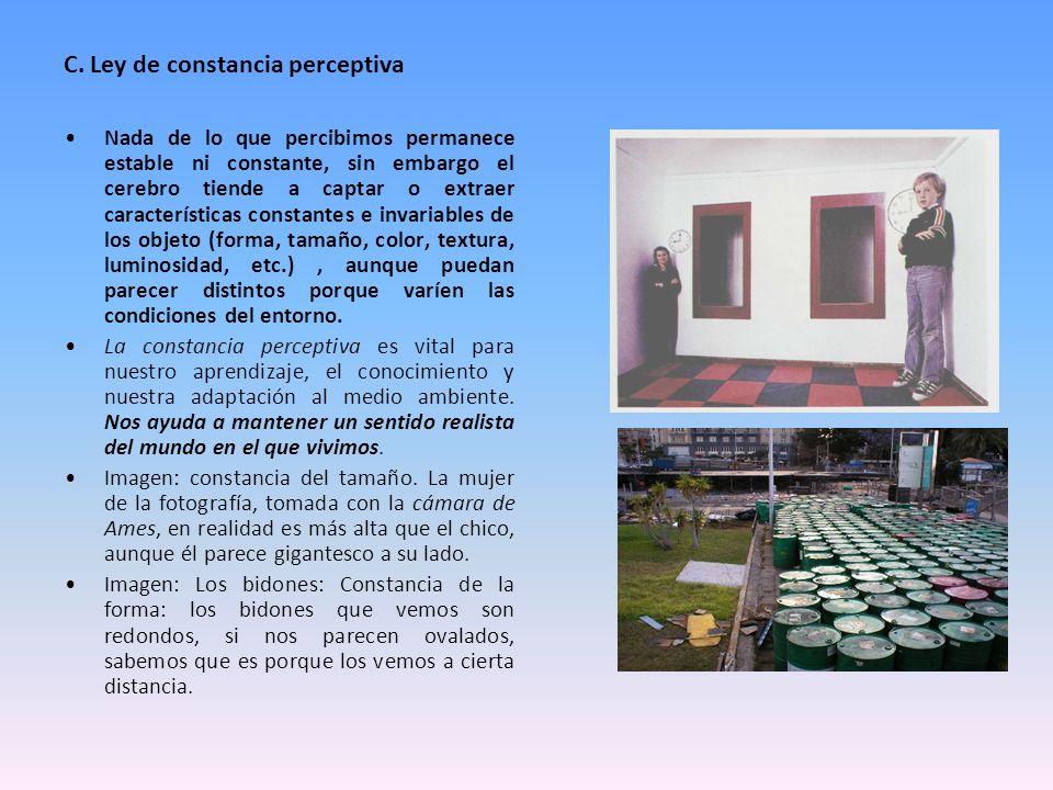 C. Ley de constancia perceptiva